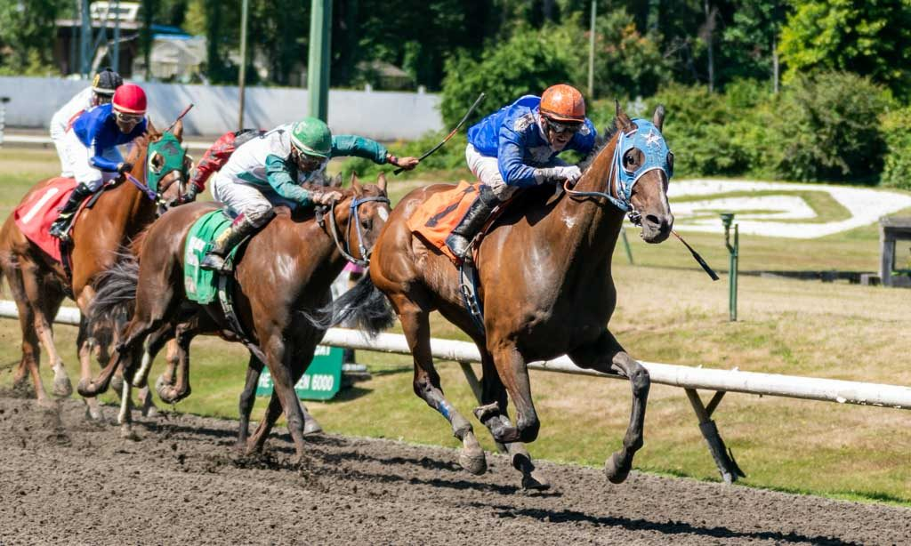 Deighton Cup at Hastings Racecourse 2019